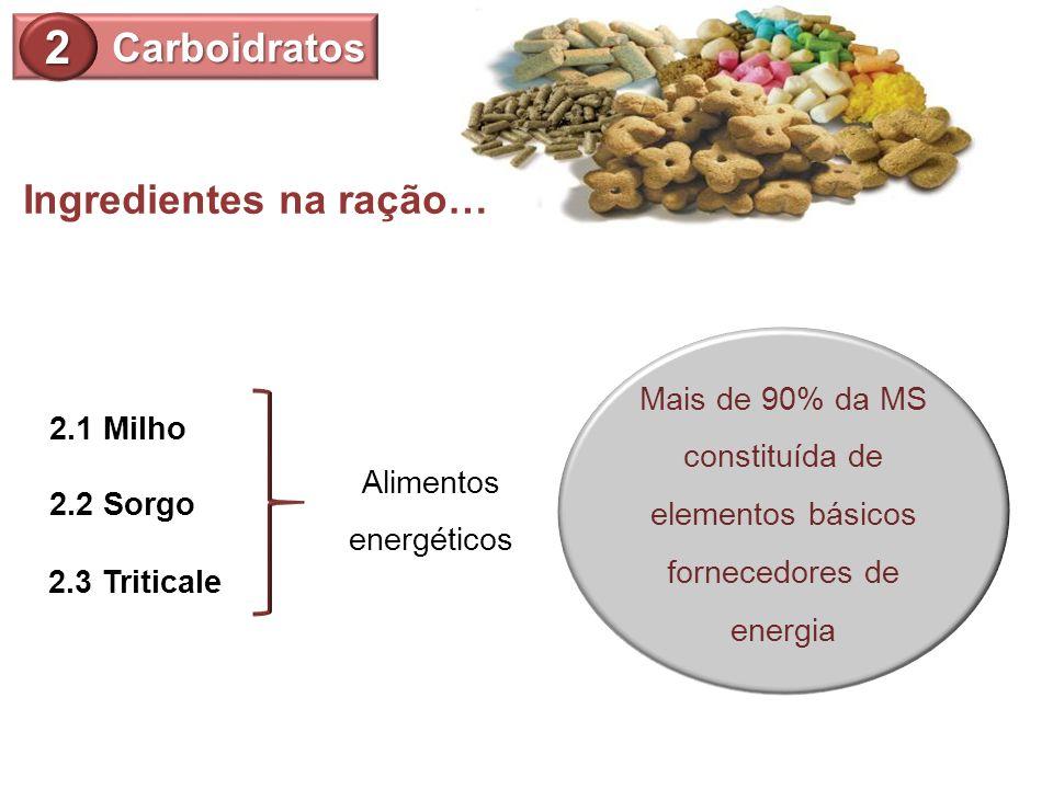 Mais de 90% da MS constituída de elementos básicos fornecedores de energia 2.3 Triticale Carboidratos 2 2.1 Milho 2.2 Sorgo Alimentos energéticos Ingr