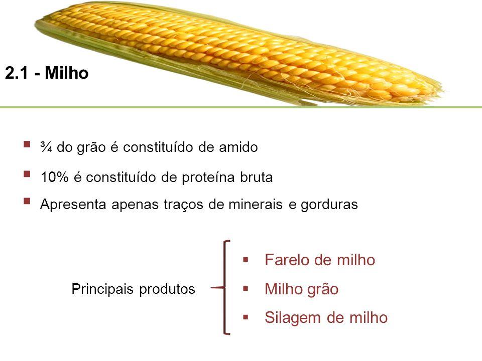 Farelo de milho Milho grão Silagem de milho Apresenta apenas traços de minerais e gorduras 2.1 - Milho ¾ do grão é constituído de amido 10% é constitu