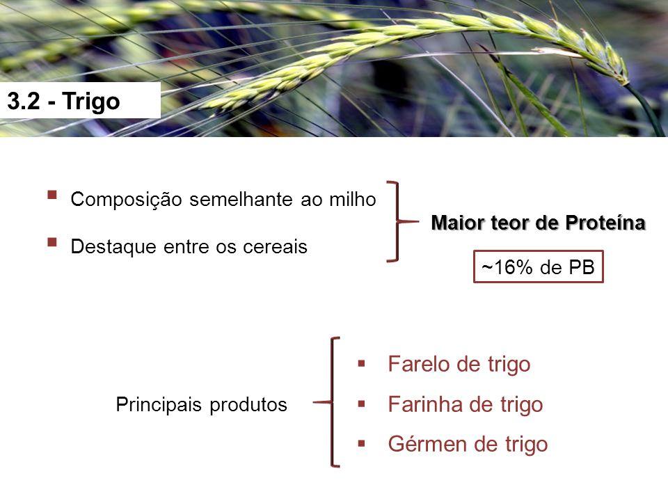 3.2 - Trigo Composição semelhante ao milho Destaque entre os cereais ~16% de PB Maior teor de Proteína Principais produtos Farelo de trigo Farinha de