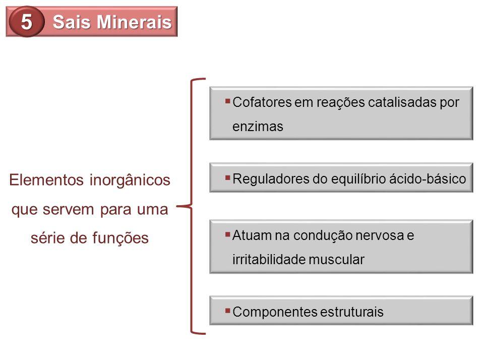 Sais Minerais 5 Cofatores em reações catalisadas por enzimas Reguladores do equilíbrio ácido-básico Atuam na condução nervosa e irritabilidade muscula