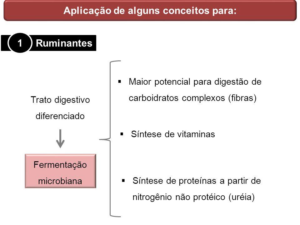 Aplicação de alguns conceitos para: Ruminantes 1 Trato digestivo diferenciado Fermentação microbiana Maior potencial para digestão de carboidratos com