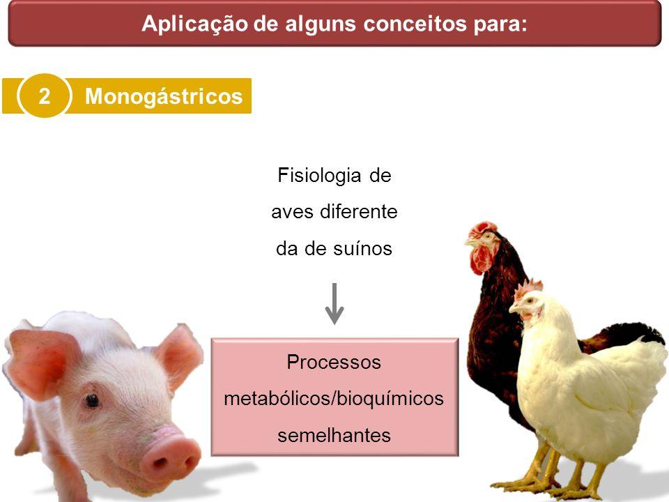 Aplicação de alguns conceitos para: Monogástricos 2 Fisiologia de aves diferente da de suínos Processos metabólicos/bioquímicos semelhantes