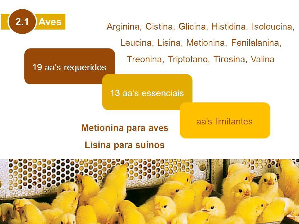 Aves 2.1 19 aas requeridos 13 aas essenciais Arginina, Cistina, Glicina, Histidina, Isoleucina, Leucina, Lisina, Metionina, Fenilalanina, Treonina, Tr