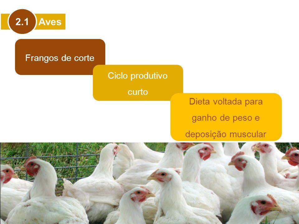 Aves 2.1 Frangos de corte Ciclo produtivo curto Dieta voltada para ganho de peso e deposição muscular
