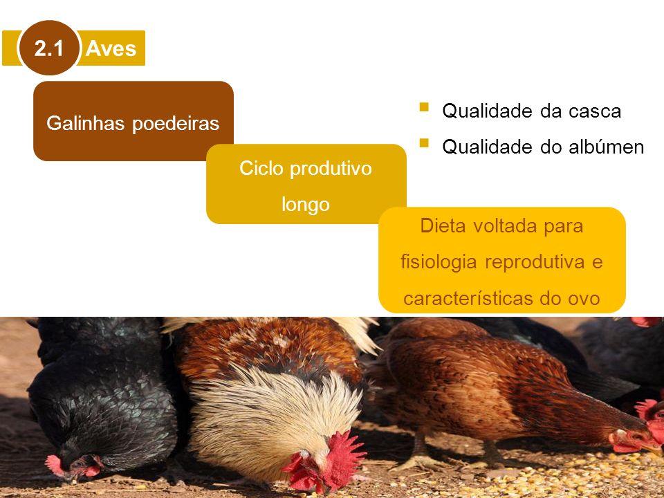 Aves 2.1 Galinhas poedeiras Ciclo produtivo longo Dieta voltada para fisiologia reprodutiva e características do ovo Qualidade da casca Qualidade do a