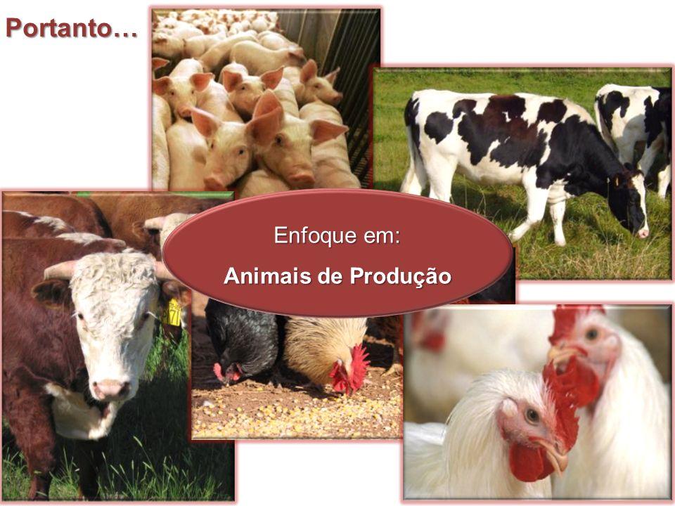 Ração: Total de alimento ingerido pelo animal em um período de 24 horas