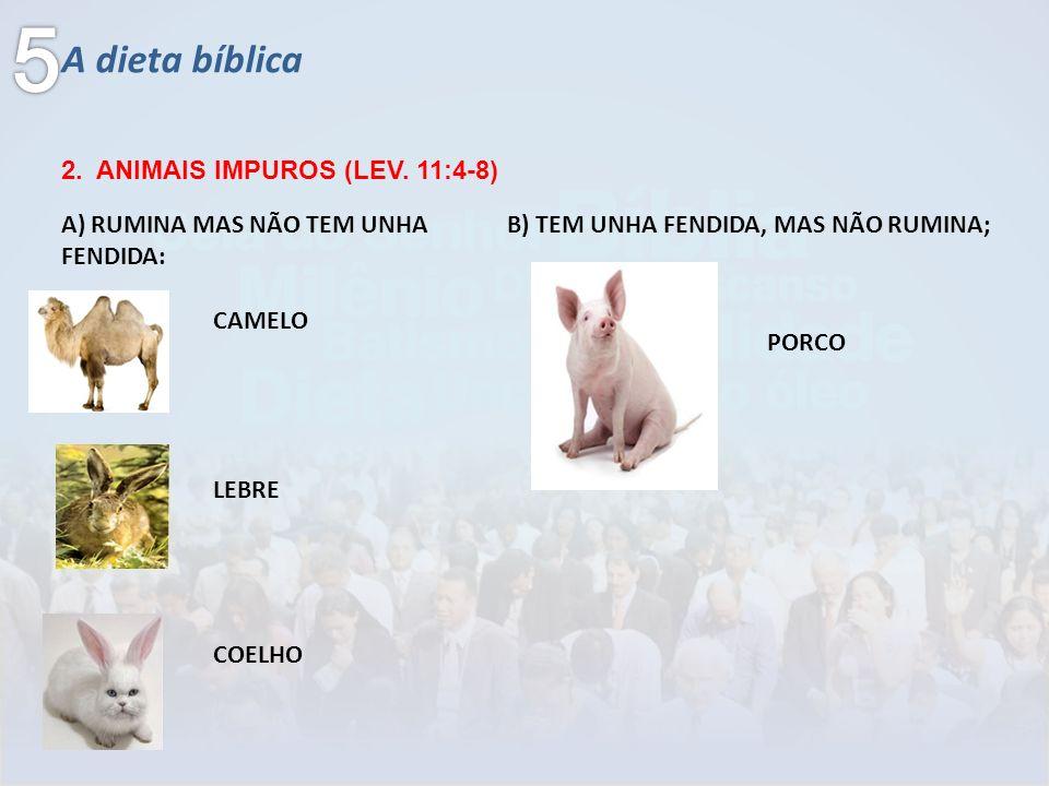 A dieta bíblica 2. ANIMAIS IMPUROS (LEV. 11:4-8) CAMELO LEBRE A) RUMINA MAS NÃO TEM UNHA FENDIDA: COELHO B) TEM UNHA FENDIDA, MAS NÃO RUMINA; PORCO