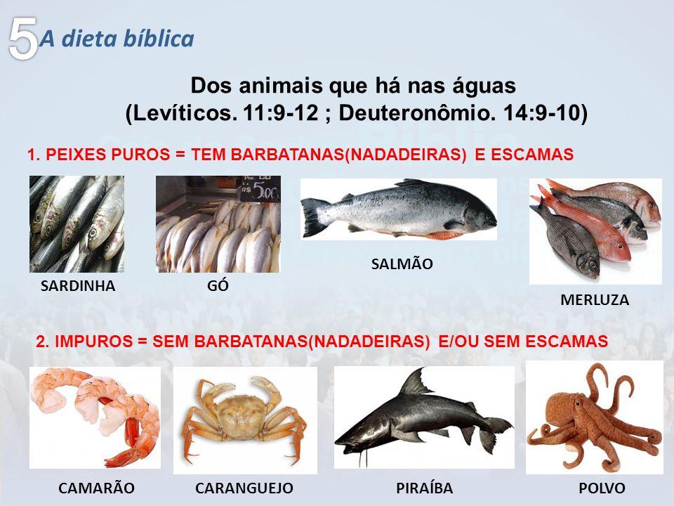 A dieta bíblica Dos animais que há nas águas (Levíticos. 11:9-12 ; Deuteronômio. 14:9-10) 1. PEIXES PUROS = TEM BARBATANAS(NADADEIRAS) E ESCAMAS SARDI