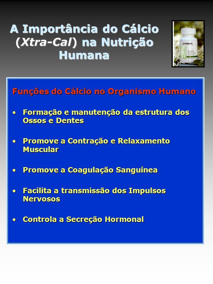 A Importância do Cálcio (Xtra-Cal) na Nutrição Humana Funções do Cálcio no Organismo Humano Formação e manutenção da estrutura dos Ossos e DentesFormação e manutenção da estrutura dos Ossos e Dentes Promove a Contração e Relaxamento MuscularPromove a Contração e Relaxamento Muscular Promove a Coagulação SanguíneaPromove a Coagulação Sanguínea Facilita a transmissão dos Impulsos NervososFacilita a transmissão dos Impulsos Nervosos Controla a Secreção HormonalControla a Secreção Hormonal