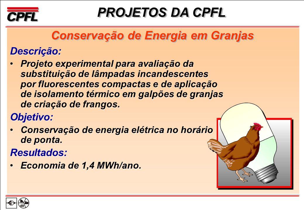 PROJETOS DA CPFL Descrição: Projeto experimental para avaliação da substituição de lâmpadas incandescentes por fluorescentes compactas e de aplicação de isolamento térmico em galpões de granjas de criação de frangos.