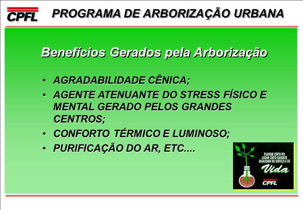 PROGRAMA DE ARBORIZAÇÃO URBANA Benefícios Gerados pela Arborização AGRADABILIDADE CÊNICA; AGENTE ATENUANTE DO STRESS FÍSICO E MENTAL GERADO PELOS GRANDES CENTROS; CONFORTO TÉRMICO E LUMINOSO; PURIFICAÇÃO DO AR, ETC....