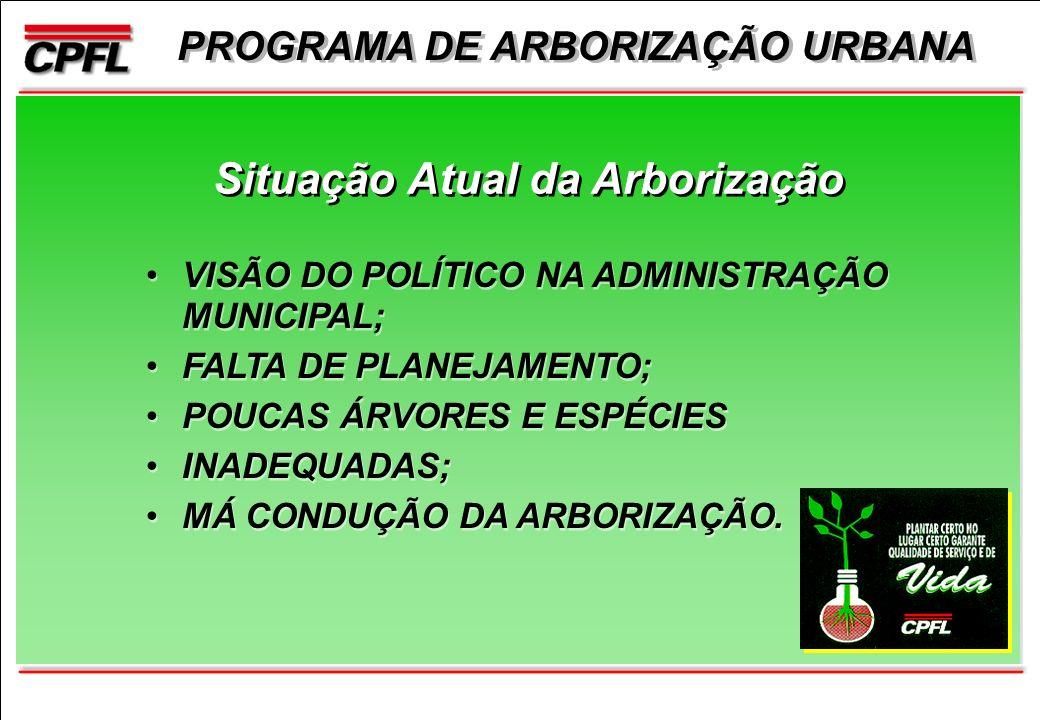 PROGRAMA DE ARBORIZAÇÃO URBANA Situação Atual da Arborização VISÃO DO POLÍTICO NA ADMINISTRAÇÃO MUNICIPAL; FALTA DE PLANEJAMENTO; POUCAS ÁRVORES E ESPÉCIES INADEQUADAS; MÁ CONDUÇÃO DA ARBORIZAÇÃO.