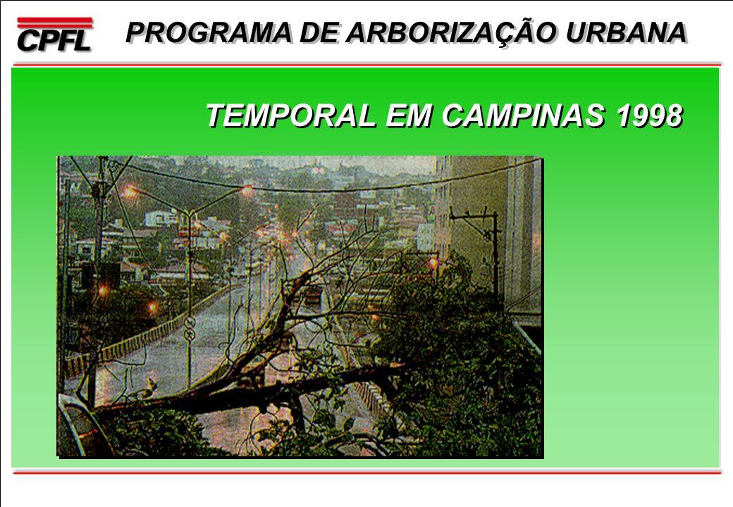 PROGRAMA DE ARBORIZAÇÃO URBANA TEMPORAL EM CAMPINAS 1998