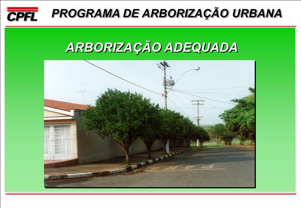 PROGRAMA DE ARBORIZAÇÃO URBANA ARBORIZAÇÃO ADEQUADA