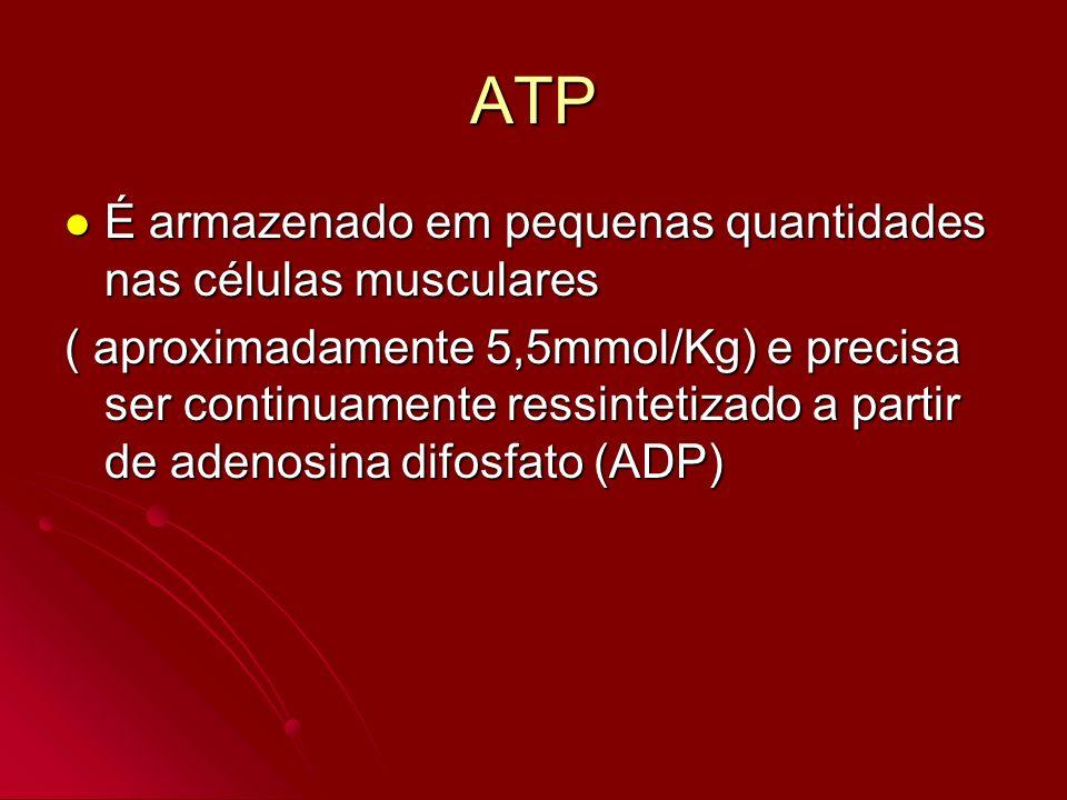 ATP É armazenado em pequenas quantidades nas células musculares É armazenado em pequenas quantidades nas células musculares ( aproximadamente 5,5mmol/