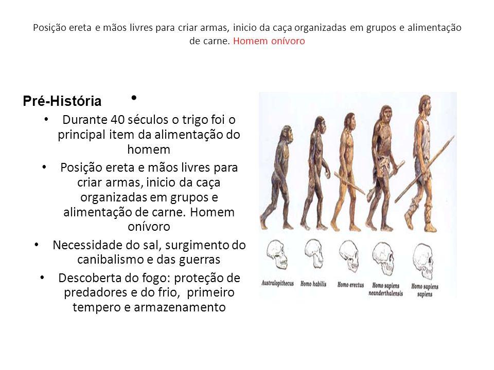 A DESCOBERTA DO FOGO Começou a ser usado ha cerca de 1,5 milhão de anos e isso foi decisivo para diferenciar o homem dos outros animais.