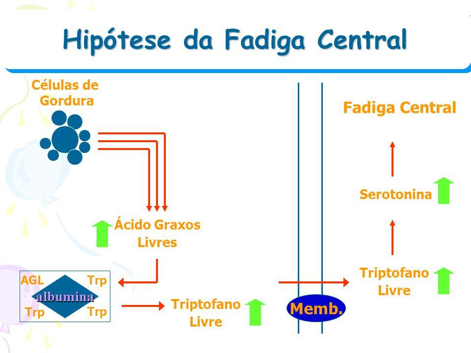 Hipótese da Fadiga Central Hipótese da Fadiga Central Células de Gordura Ácido Graxos Livres albumina AGLTrp Triptofano Livre Memb. Triptofano Livre S