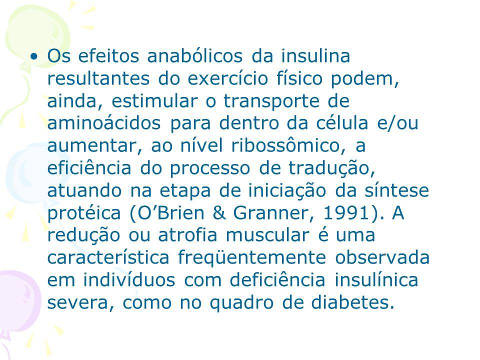 Os efeitos anabólicos da insulina resultantes do exercício físico podem, ainda, estimular o transporte de aminoácidos para dentro da célula e/ou aumen