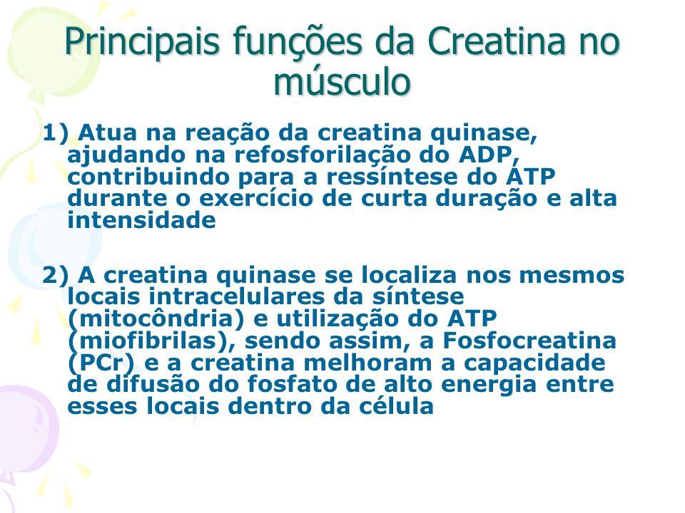 Principais funções da Creatina no músculo 1) Atua na reação da creatina quinase, ajudando na refosforilação do ADP, contribuindo para a ressíntese do