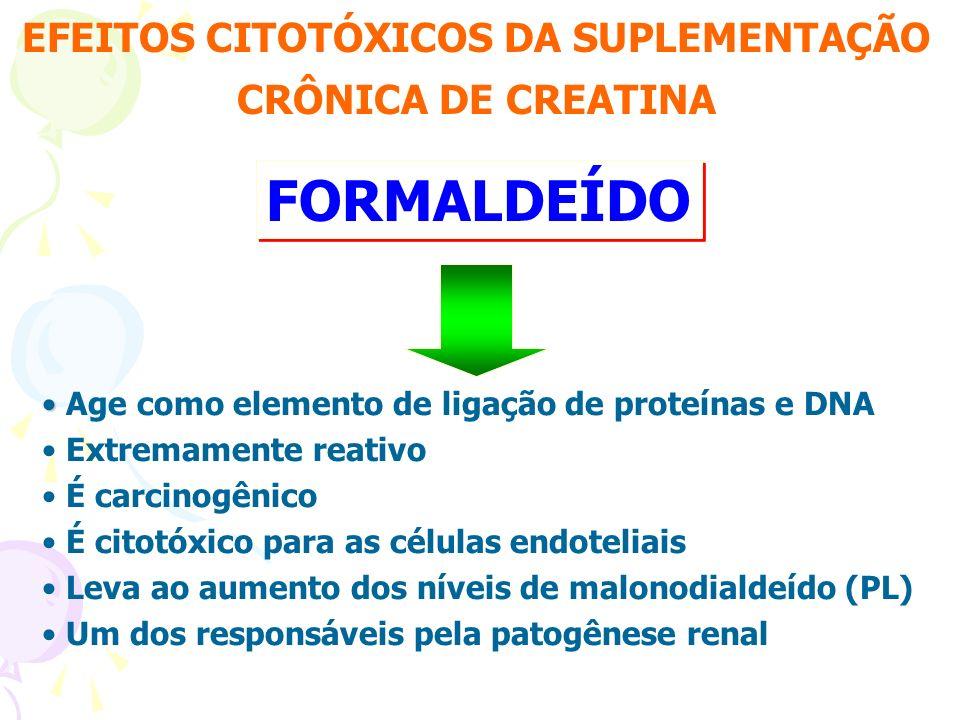EFEITOS CITOTÓXICOS DA SUPLEMENTAÇÃO CRÔNICA DE CREATINA FORMALDEÍDO Age como elemento de ligação de proteínas e DNA Extremamente reativo É carcinogên