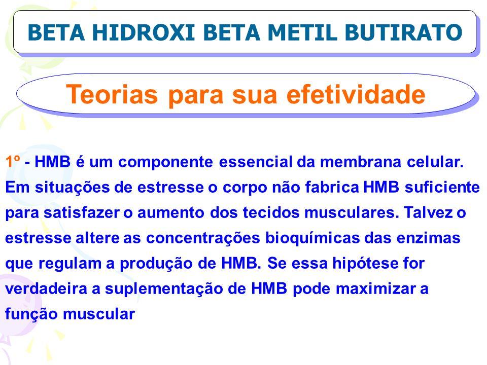 Teorias para sua efetividade BETA HIDROXI BETA METIL BUTIRATO 1º - HMB é um componente essencial da membrana celular. Em situações de estresse o corpo