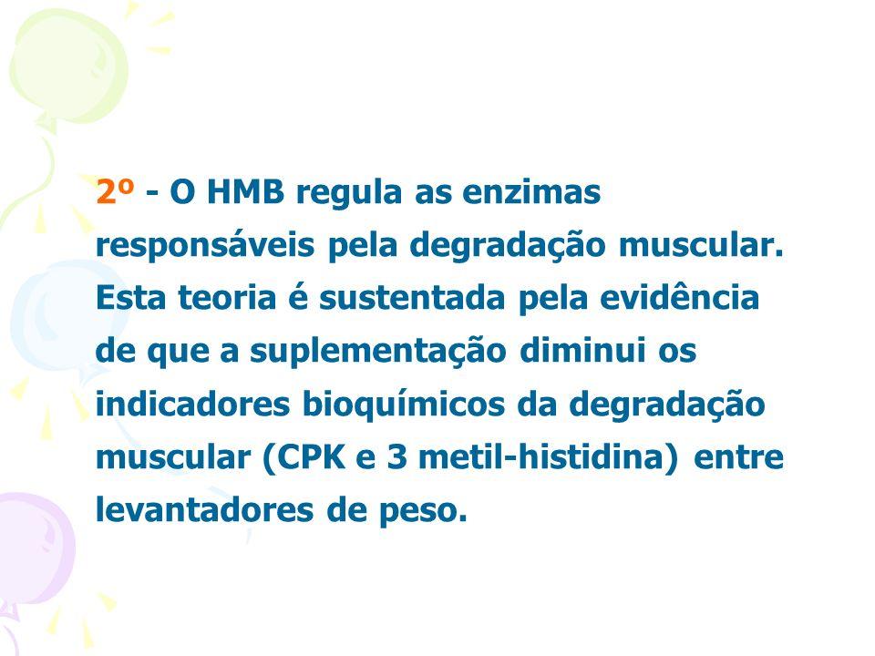 2º - O HMB regula as enzimas responsáveis pela degradação muscular. Esta teoria é sustentada pela evidência de que a suplementação diminui os indicado