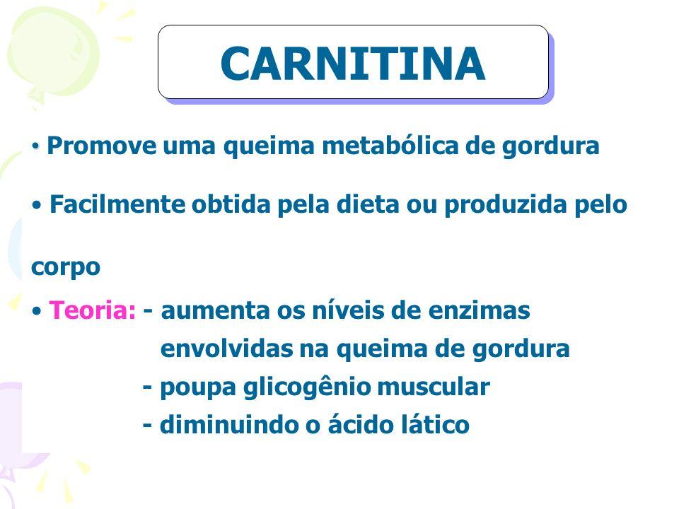 Promove uma queima metabólica de gordura Facilmente obtida pela dieta ou produzida pelo corpo Teoria: - aumenta os níveis de enzimas envolvidas na que