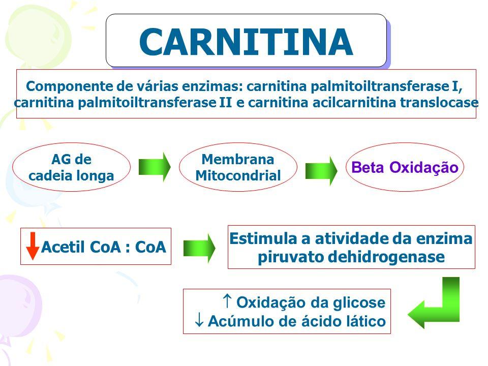 Componente de várias enzimas: carnitina palmitoiltransferase I, carnitina palmitoiltransferase II e carnitina acilcarnitina translocase AG de cadeia l