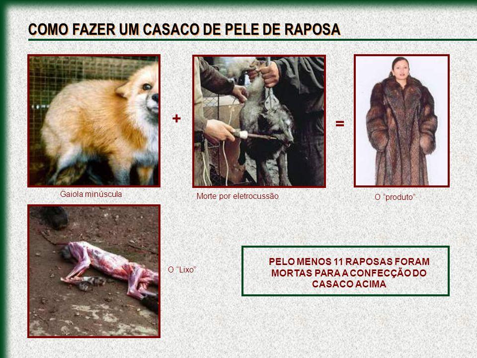 Em alguns países usam-se armadilhas, embora sempre digam que os animais foram criados em fazendas.