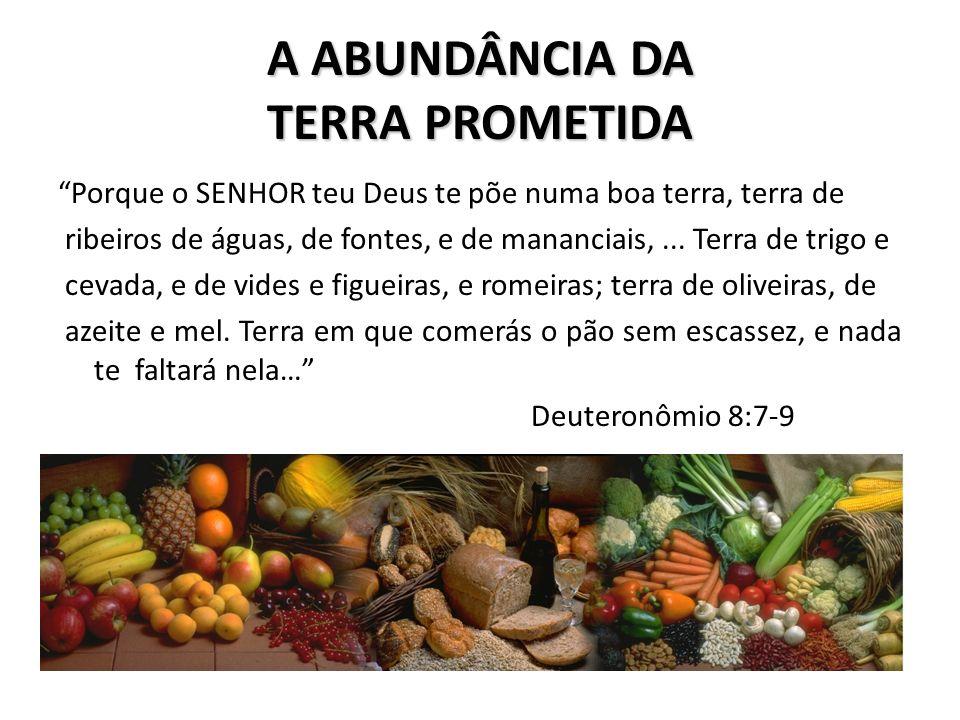 A ABUNDÂNCIA DA TERRA PROMETIDA Porque o SENHOR teu Deus te põe numa boa terra, terra de ribeiros de águas, de fontes, e de mananciais,... Terra de tr