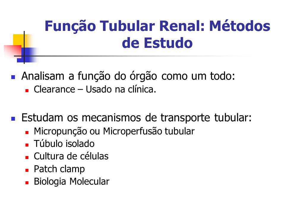 Função Tubular Renal: Métodos de Estudo Analisam a função do órgão como um todo: Clearance – Usado na clínica. Estudam os mecanismos de transporte tub