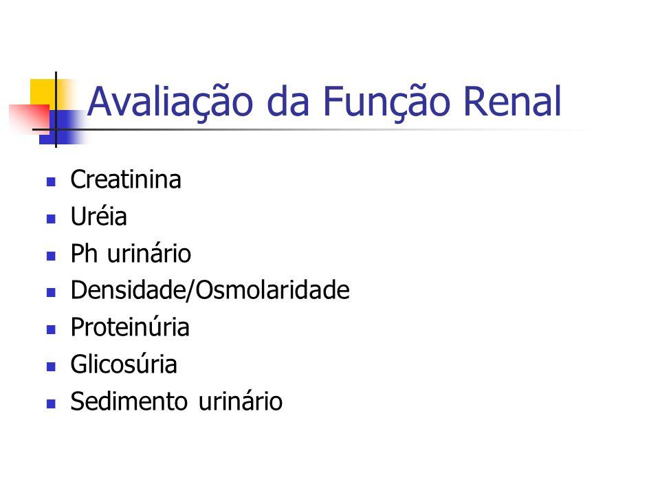 Creatinina Uréia Ph urinário Densidade/Osmolaridade Proteinúria Glicosúria Sedimento urinário Avaliação da Função Renal