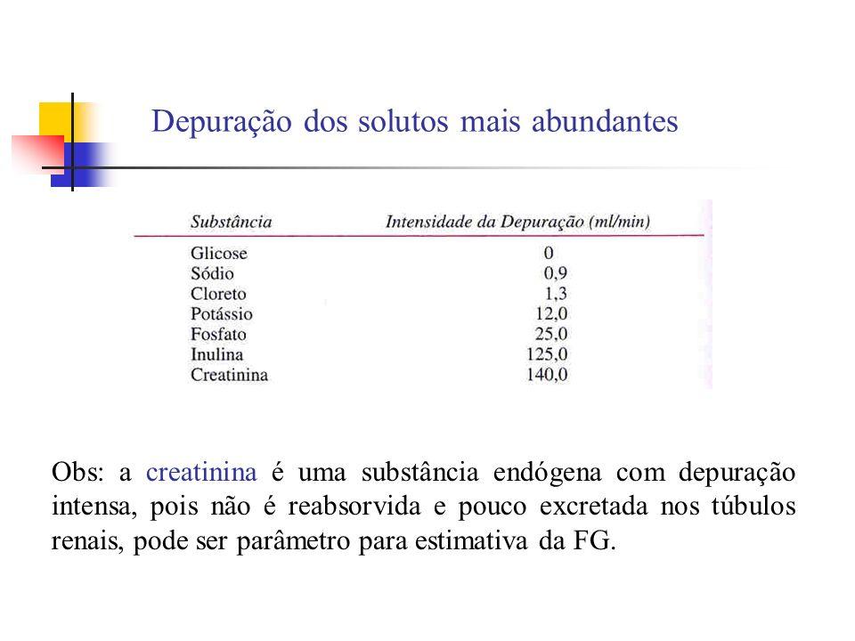 Depuração dos solutos mais abundantes Obs: a creatinina é uma substância endógena com depuração intensa, pois não é reabsorvida e pouco excretada nos túbulos renais, pode ser parâmetro para estimativa da FG.