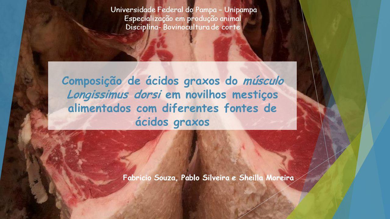 Material e Métodos Campus de Pirassununga USP 36 bovinos divididos em 3 lotes de 12 ¾ os taurus taurus x Bos taurus indicus ¼ = 14 meses 96 dias 28 (adaptação)