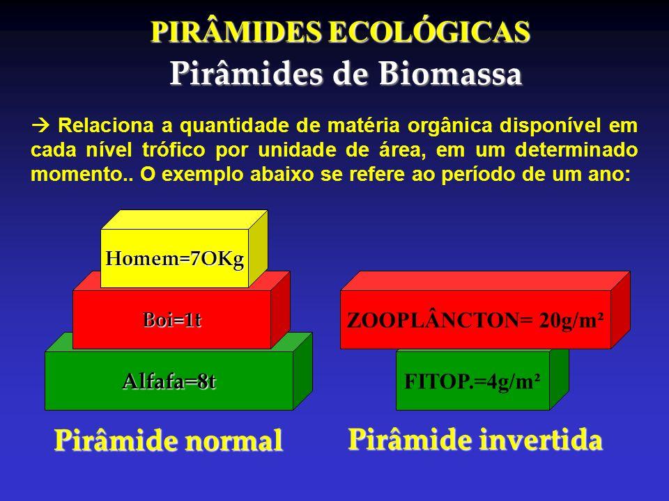 PIRÂMIDES ECOLÓGICAS Pirâmides de Biomassa Alfafa =8t Boi=1t Homem=7OKg Pirâmide normal FITOP.=4g/m² ZOOPLÂNCTON= 20g/m² Pirâmide invertida Relaciona