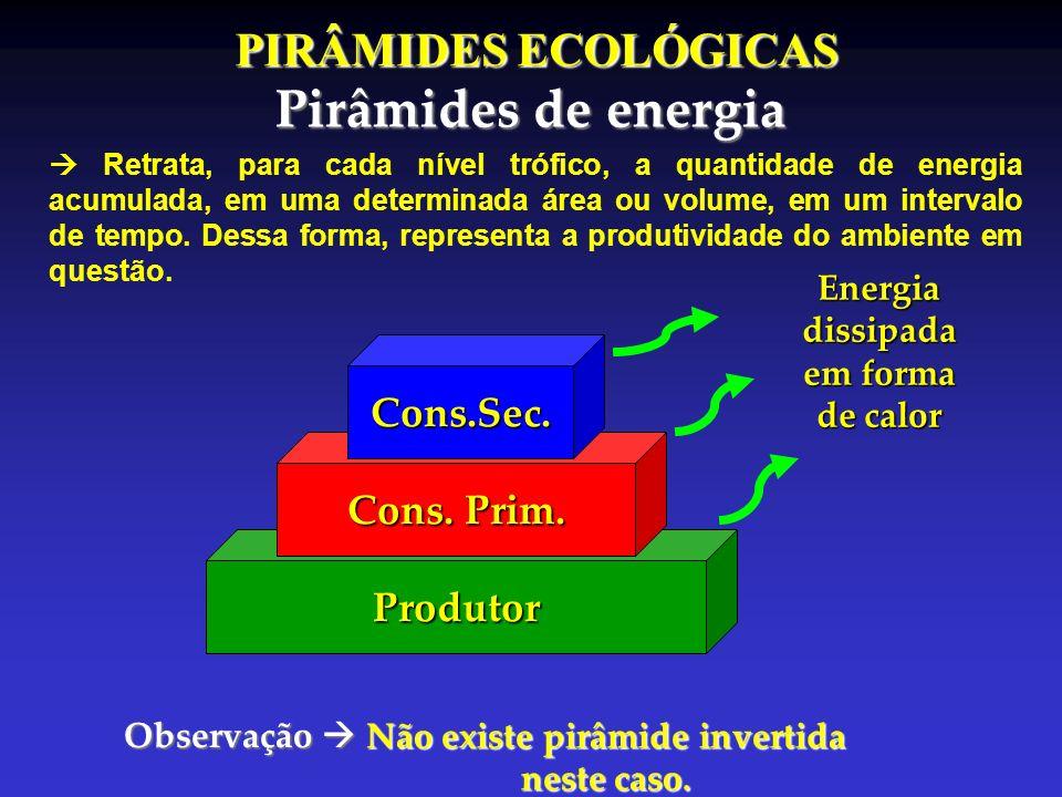 PIRÂMIDES ECOLÓGICAS Pirâmides de energia Produtor Cons. Prim. Cons.Sec.Energiadissipada em forma de calor Observação Observação Não existe pirâmide i