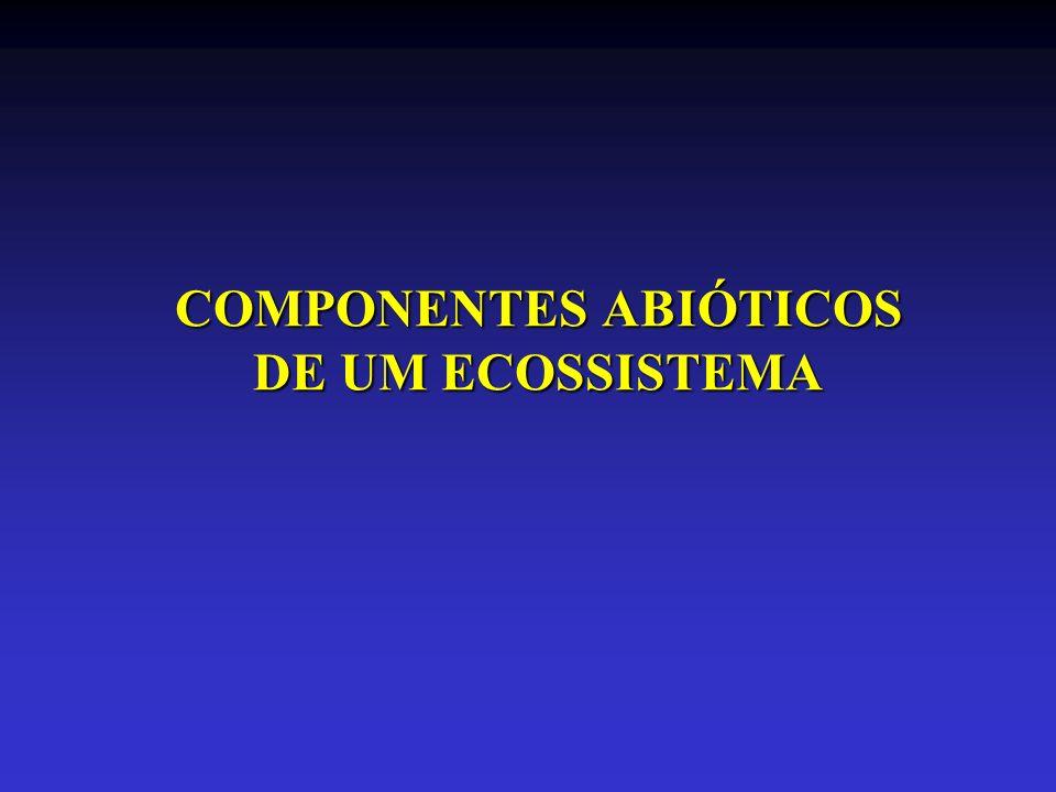 COMPONENTES ABIÓTICOS DE UM ECOSSISTEMA