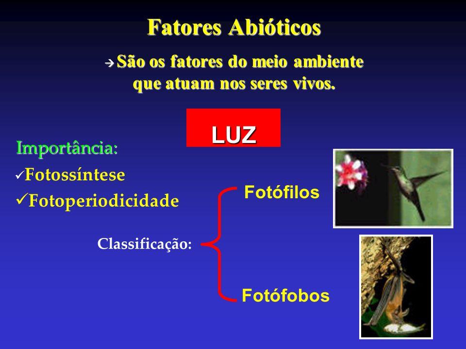 Fatores Abióticos São os fatores do meio ambiente que atuam nos seres vivos. LUZImportância: Fotossíntese Fotoperiodicidade Classificação: Fotófilos F