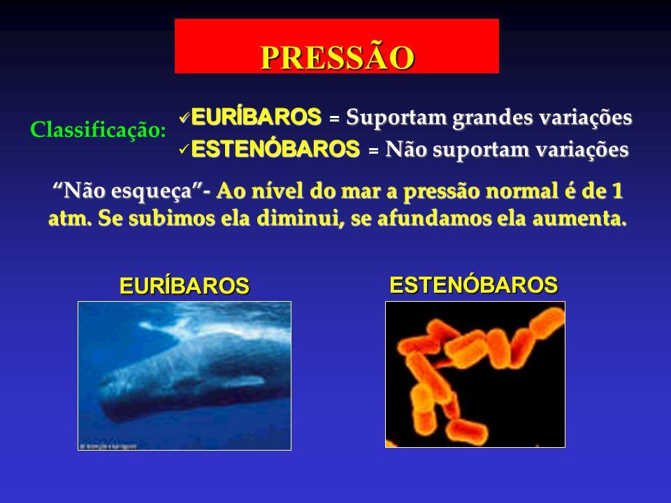 PRESSÃO Classificação: EURÍBAROS EURÍBAROS = Suportam grandes variações ESTENÓBAROS ESTENÓBAROS = Não suportam variações Não esqueça-Ao nível do mar a