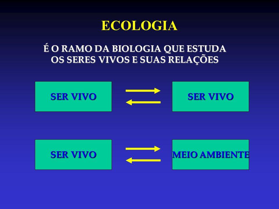 NÍVEIS DE ORGANIZAÇÃO CÉLULACitologiaTECIDOHistologiaINDIVÍDUOEspécieÓRGÃO/SIST.Anatomia POPULAÇÃO Conjunto de indivíduos de uma mesma espécie de uma mesma espécieárea/volume COMUNIDADE Conjunto de populações que habitam um mesma que habitam um mesmaárea/volume ECOSSISTEMABiocenose(Comunidade)+Biótopo BIOSFERA Conjunto de Ecossistemas Ecossistemas do planeta Terra do planeta Terra