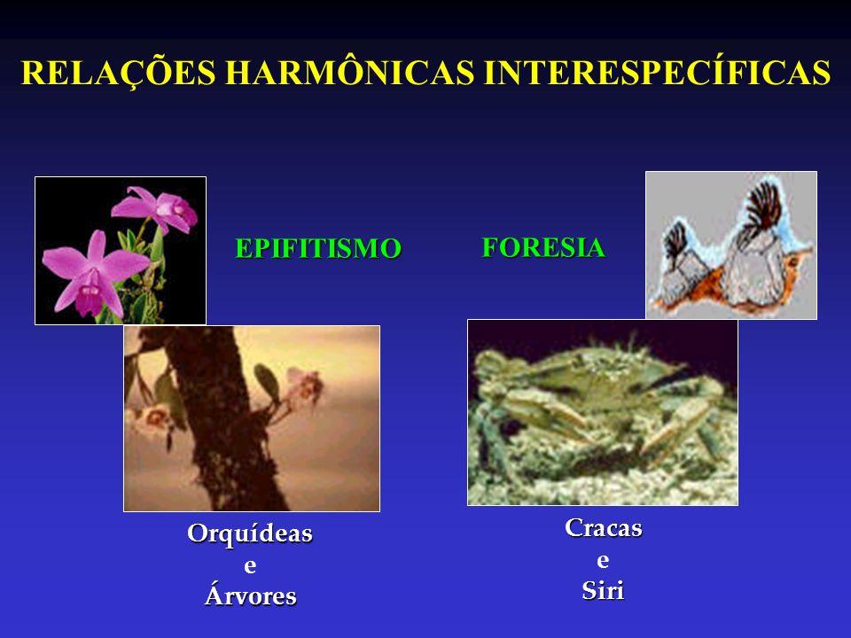 RELAÇÕES HARMÔNICAS INTERESPECÍFICAS EPIFITISMO FORESIA Orquídeas eÁrvores Cracas Siri