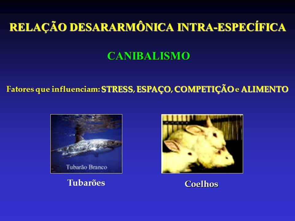 RELAÇÃO DESARARMÔNICA INTRA-ESPECÍFICA CANIBALISMO STRESSESPAÇOCOMPETIÇÃOALIMENTO Fatores que influenciam: STRESS, ESPAÇO, COMPETIÇÃO e ALIMENTO Tubar
