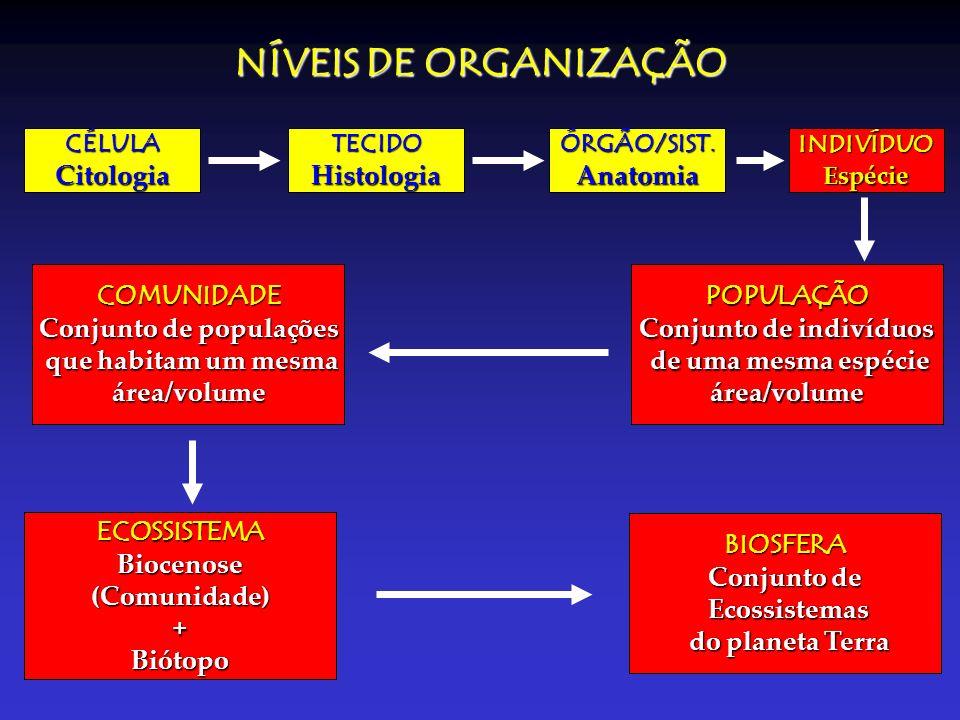 NÍVEIS DE ORGANIZAÇÃO CÉLULACitologiaTECIDOHistologiaINDIVÍDUOEspécieÓRGÃO/SIST.Anatomia POPULAÇÃO Conjunto de indivíduos de uma mesma espécie de uma
