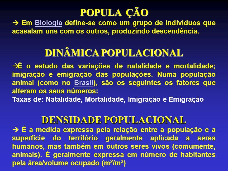 DENSIDADE POPULACIONAL É a medida expressa pela relação entre a população e a superfície do território geralmente aplicada a seres humanos, mas também