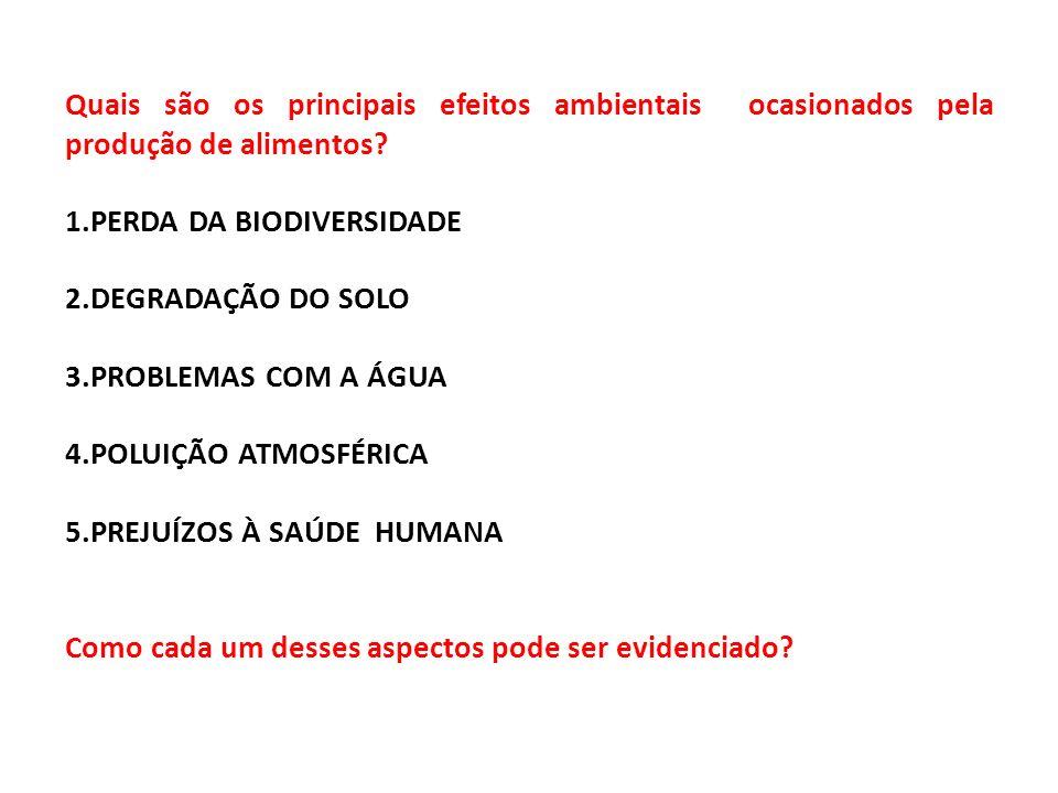 1.PERDA DA BIODIVERSIDADE 2.DEGRADAÇÃO DO SOLO 3.PROBLEMAS COM A ÁGUA 4.POLUIÇÃO ATMOSFÉRICA 5.PREJUÍZOS À SAÚDE HUMANA Como cada um desses aspectos pode ser evidenciado?