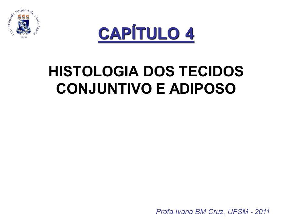 CAPÍTULO 4 CAPÍTULO 4 HISTOLOGIA DOS TECIDOS CONJUNTIVO E ADIPOSO Profa.Ivana BM Cruz, UFSM - 2011