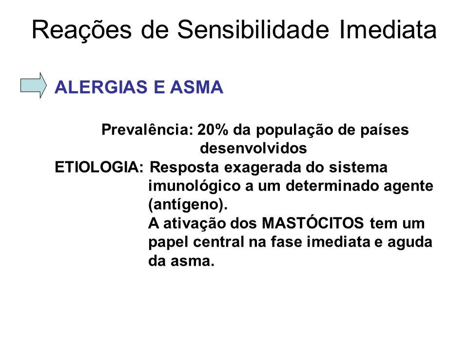 ALERGIAS E ASMA Prevalência: 20% da população de países desenvolvidos ETIOLOGIA: Resposta exagerada do sistema imunológico a um determinado agente (an