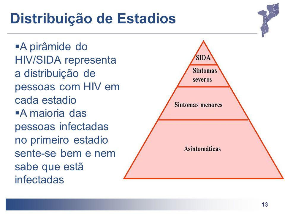 13 Distribuição de Estadios A pirâmide do HIV/SIDA representa a distribuição de pessoas com HIV em cada estadio A maioria das pessoas infectadas no pr