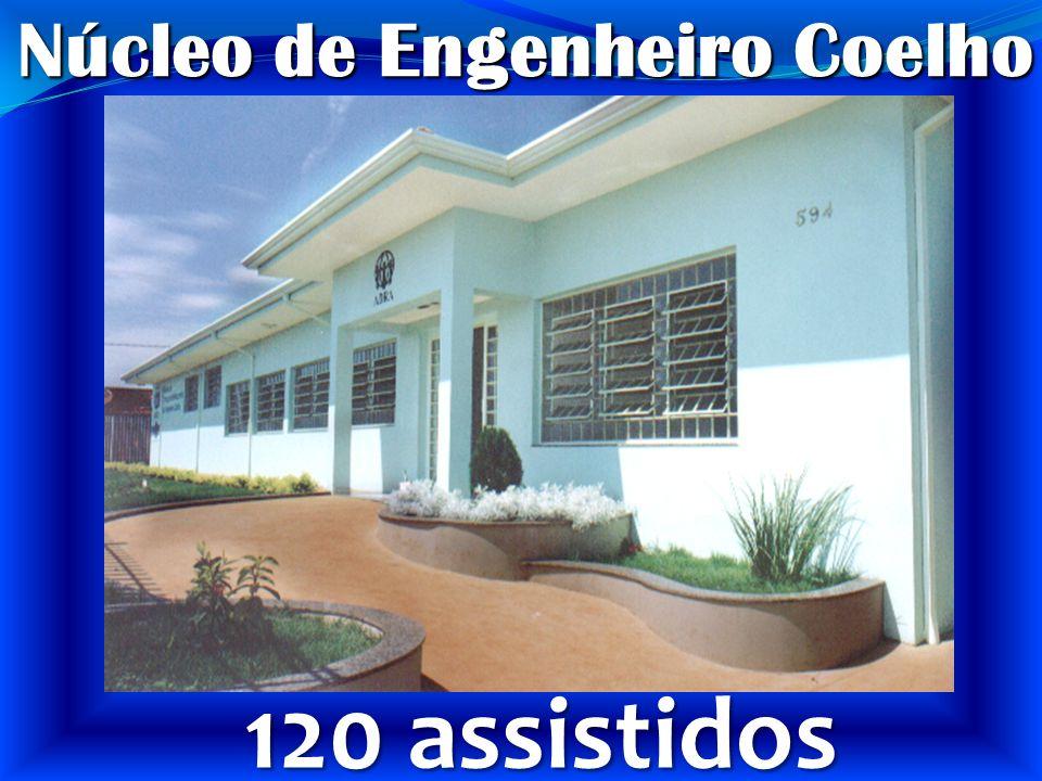 Núcleo de Engenheiro Coelho 120 assistidos