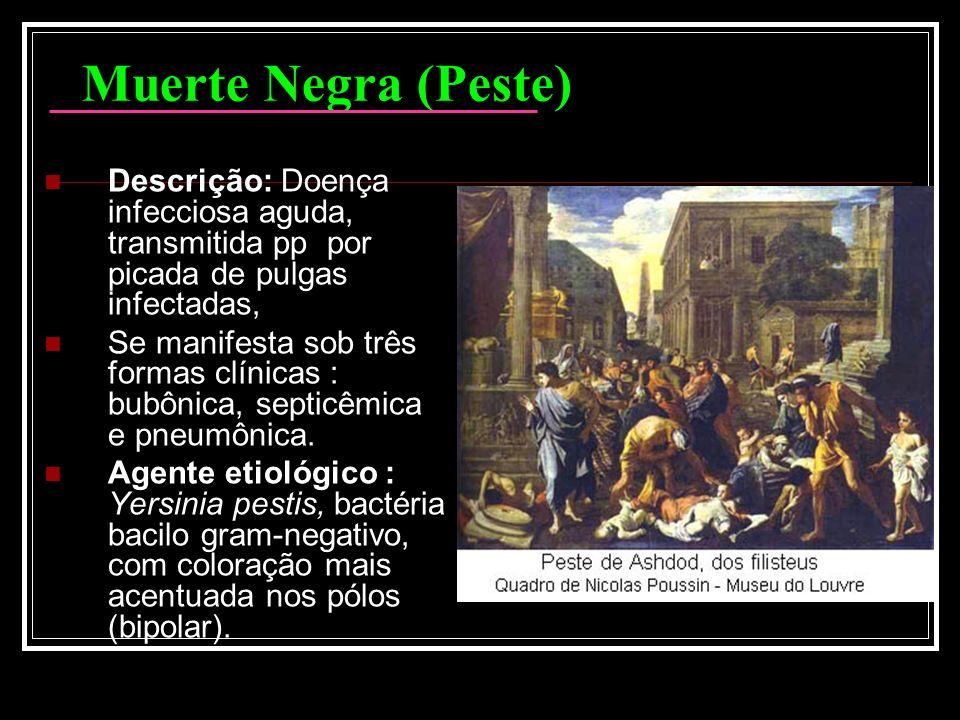Muerte Negra (Peste) Descrição: Doença infecciosa aguda, transmitida pp por picada de pulgas infectadas, Se manifesta sob três formas clínicas : bubôn